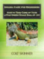 Thumbnail Iguana Care for Beginners